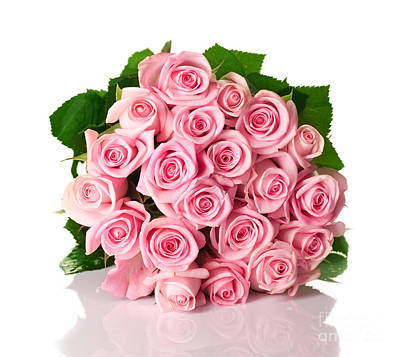 Beautiful Pink Rose Bouquet Poster