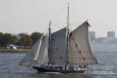 Beautiful Sailboat In Manhattan Harbor Poster