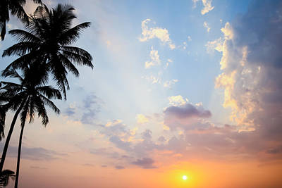 Beautiful Tropical Sunset Poster by Nila Newsom