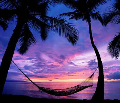 Beautiful Vacation Sunset, Hammock Poster by Design Pics Vibe