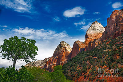 Beautiful Zion Poster by Robert Bales