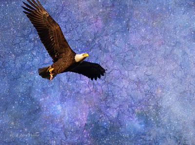 Beauty In Flight - Bald Eagle Poster by J Larry Walker