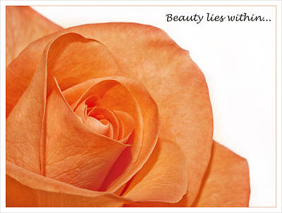 Poster featuring the photograph Beauty Lies Within... by Kim Andelkovic