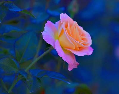 Flower 9 Poster