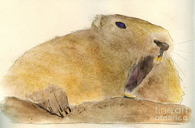 Beaver Poster by Ellen Darby