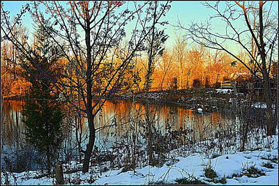Beaver Pond In Mt. Healthy Ohio Poster