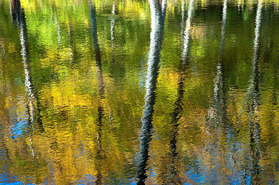 Beaver Pond Reflections - 3 Poster by Rob Huntley