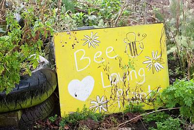 Bee Loving Plants Poster by Ashley Cooper