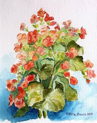 Begonias Still Life Poster