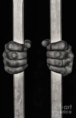 Behind Bars Poster by Svetlana Sewell