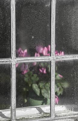 Behind Window Poster
