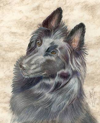 Belgian Sheepdog Poster by Ruth Seal