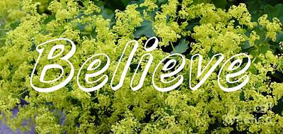 Believe On Ladies Mantle Poster