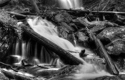 Below Anna Ruby Falls In Black And White Poster