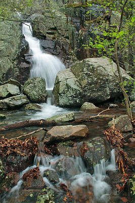 Below Mina Sauk Falls On Taum Sauk Mountain 3 Poster by Greg Matchick