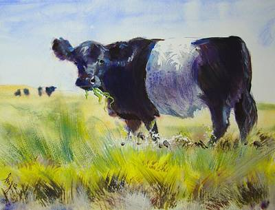 Belted Galloway Cow Poster