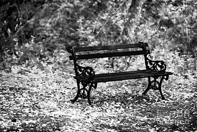 Bench At Charles Town Poster