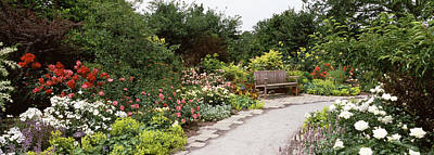 Bench In A Garden, Olbrich Botanical Poster by Panoramic Images