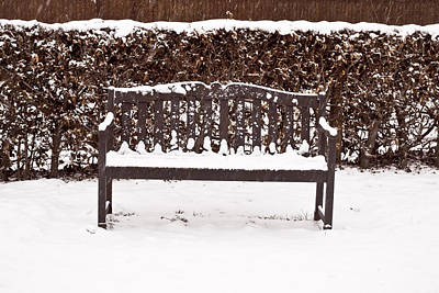 Bench In The Snow Poster by Tom Gowanlock