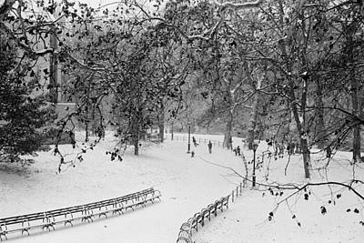 Benches In Snow Poster by Dave Beckerman
