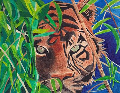 Bengal Eyes Poster by Molly Williams