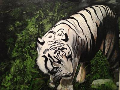 Poster featuring the painting Bengal's White Tiger by Brindha Naveen
