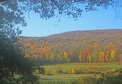 Berkshires Colors  Poster by Todd Breitling