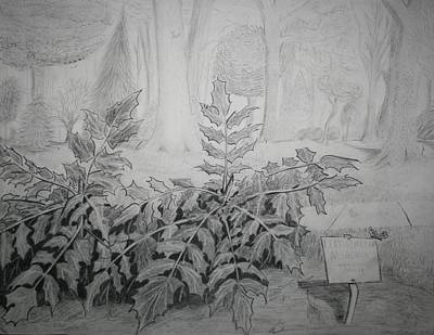 Poster featuring the drawing Bernheim Forest Plant by Stacy C Bottoms