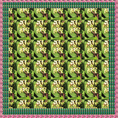 Berry Berry Green Pattern Nature Photography N Beautiful Border Poster