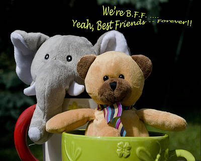 Poster featuring the photograph Best Friends Forever by Rhonda McDougall