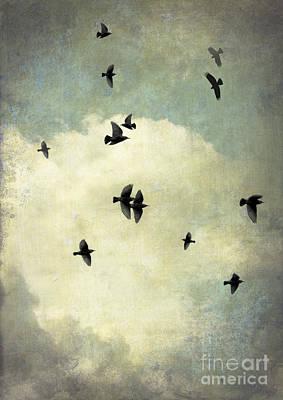 Beyond Poster by Jan Bickerton