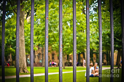Beyond The Campus Gates Poster by Colleen Kammerer