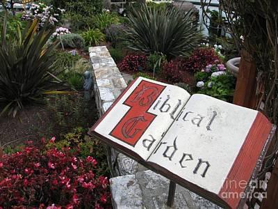 Biblical Garden Poster