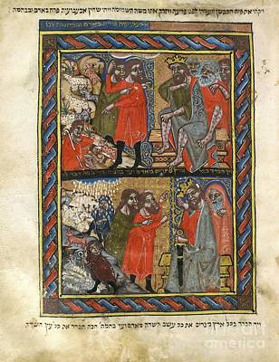 Biblical Plagues, 14th-century Manuscript Poster by British Library