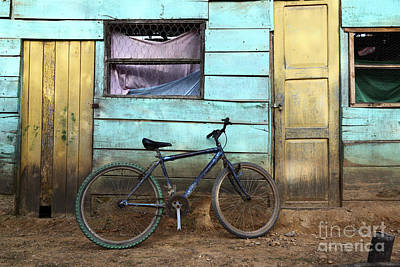 Bicycle And Green House Poster by James Brunker