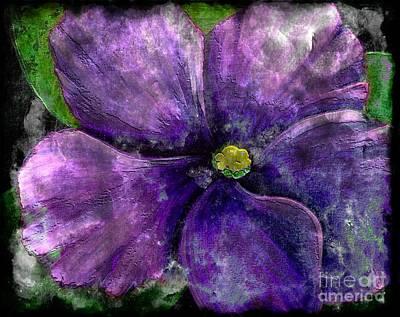 Big African Violet - Purple Flower - Steel Engraving Poster