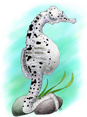 Big Belly Seahorse Poster by Roger Hall
