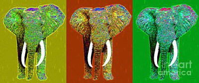 Big Elephant Three 20130201v1 Poster by Wingsdomain Art and Photography