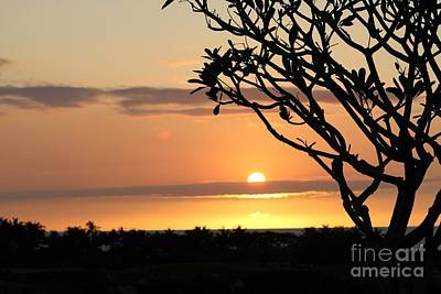 Big Island Sunset All Profits Go To Hospice Of The Calumet Area Poster
