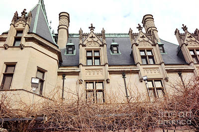 Biltmore Mansion Estate Architectural Windows And Rooftop Side View  Poster by Kathy Fornal