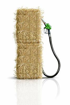 Biofuel Pump Poster by Smetek