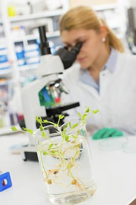 Biological Research Poster by Wladimir Bulgar