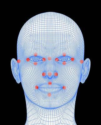 Biometric Facial Map Poster by Alfred Pasieka