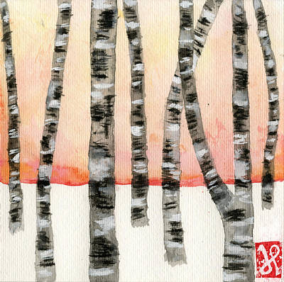 Birch At Sunset Poster