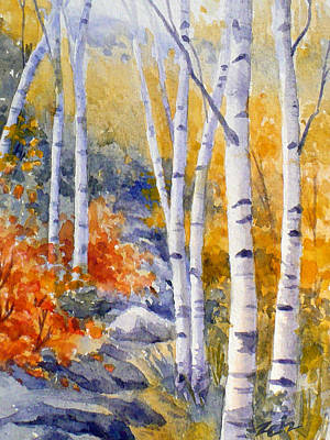 Birches Along The Trail Poster by Janet  Zeh