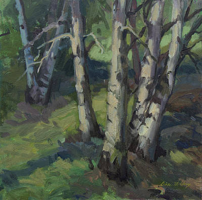 Birches Poster by Diane McClary