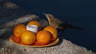 Bird Banquet Poster by Jennifer Nelson
