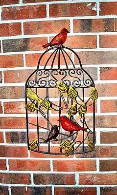 Bird Cage Decor Poster