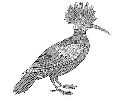 Bird Hoopoe Poster by Neeti Goswami