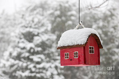 Bird House With Snow In Winter Poster